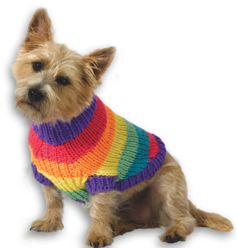 Do you knit clothes for your pets?